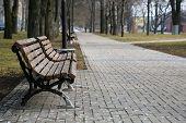 image of pooping  - Bench in the park with bird poop crap - JPG