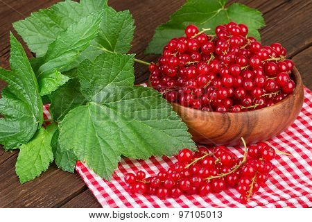 Redcurrant Berry on Rustic Background