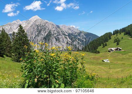 Idyllic Rocky Mountains Scenery. Austria Alps near Walderalm.