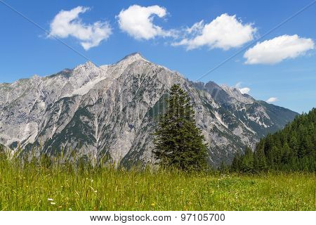 Alpine Meadow with Mountain Range in Background. Austria Tirol.