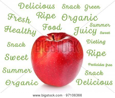 Fresh red apple and words around isolated on white