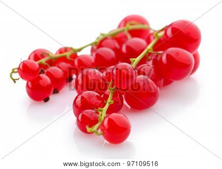 Red currants isolated on white