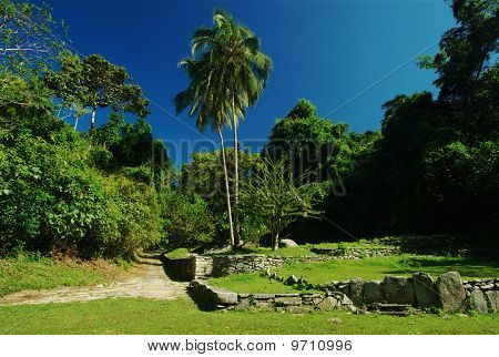 Ruins of a Tayrona Settlement