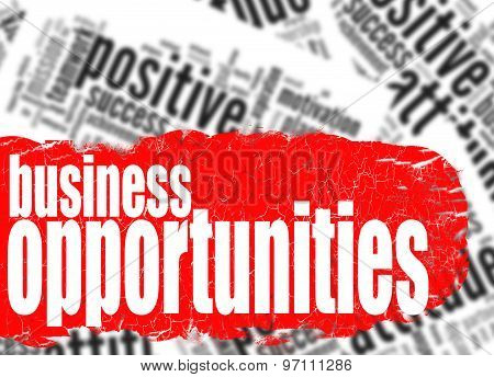 Word Cloud Business Opportunities