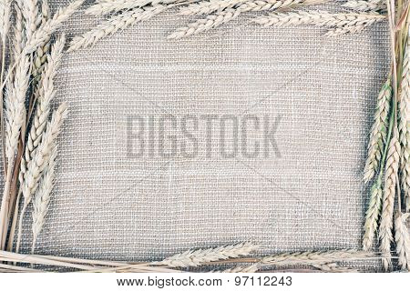 Spikelets on sackcloth background