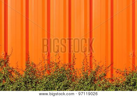 Bright Orange Corrugated Painted Metal Wall Background Contrasts With Exterior Decorative Green Plan