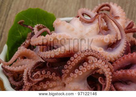 Marinated Octopus