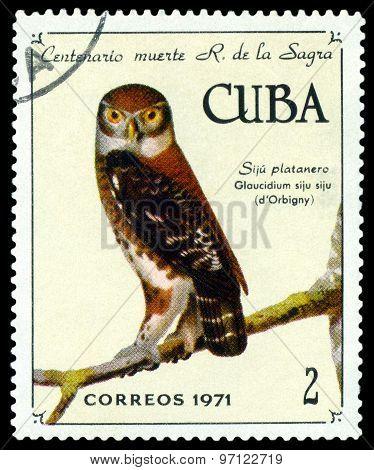 Vintage  Postage Stamp.  Cuban Pygmy Owl.