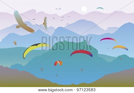 Paragliders and birds