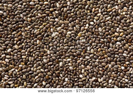 The chia seeds. Healthy superfood.
