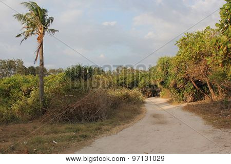 Unpaved Road In Gili Islands