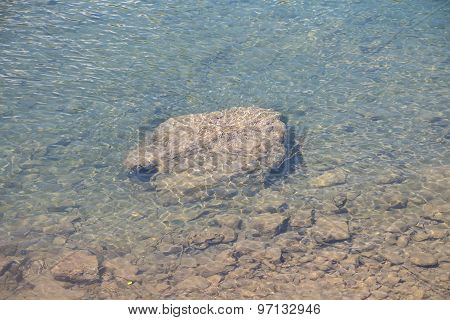 Photo arge rock on the river bottom