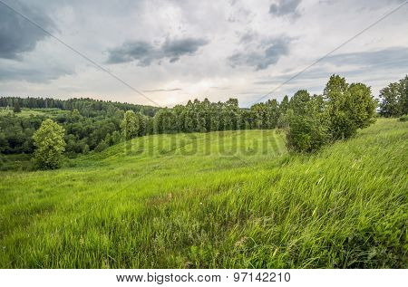 Summer field under overcast sky with clouds