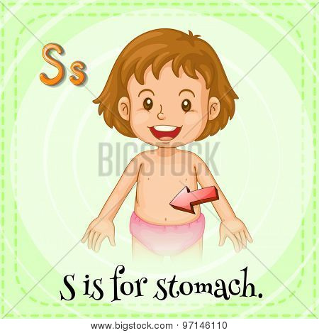Flashcard letter S is for stomach