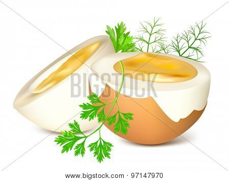 Boiled eggs with parsley and dill. Vector illustration.