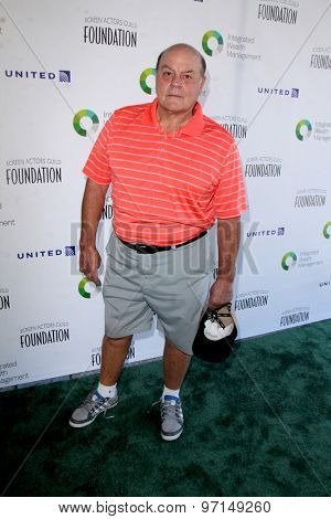 LOS ANGELES - JUN 8:  Michael Ironside at the SAG Foundations 30TH Anniversary LA Golf Classi at the Lakeside Golf Club on June 8, 2015 in Toluca Lake, CA