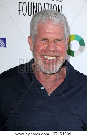 LOS ANGELES - JUN 8:  Ron Perlman at the SAG Foundations 30TH Anniversary LA Golf Classi at the Lakeside Golf Club on June 8, 2015 in Toluca Lake, CA