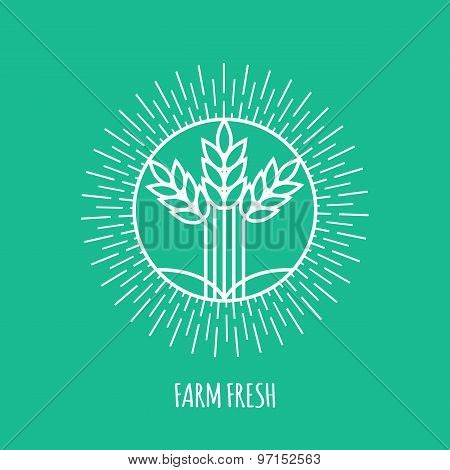 Outline farm fresh monogram or logo. Abstract organic, ecology and bio design element or badge.