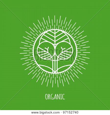 Outline organic monogram or logo. Abstract organic, ecology and bio design element or badge.
