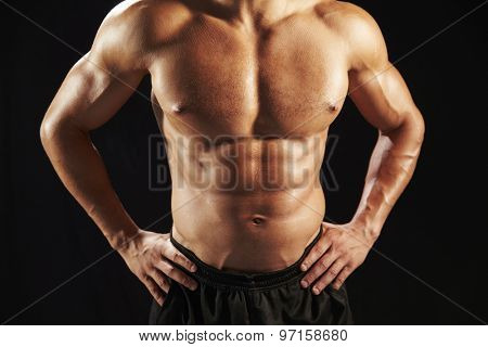 Male bodybuilder torso, front view, crop