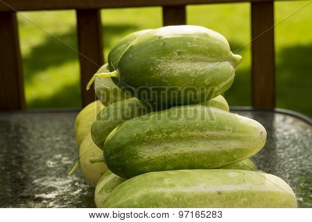 Fresh Pile Of Cucumbers Ready For Market
