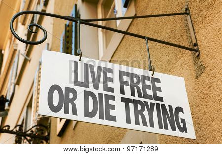 Live Free or Die Trying sign in a conceptual image