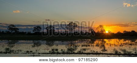 Sunset in Brazilian pantanal