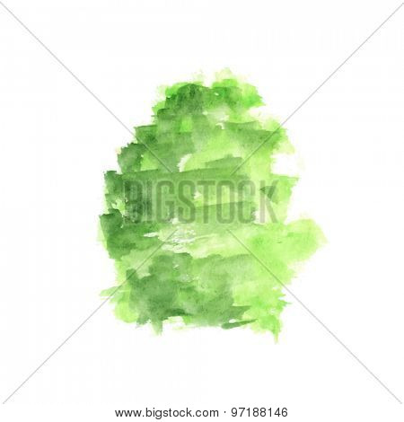 Watercolor tree isolated on white background, vector illustration