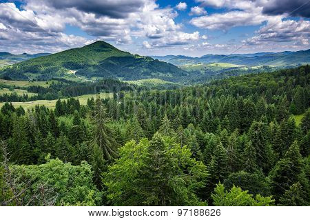 Mountains Covered In Pine Trees