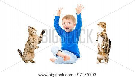 Cheerful boy and two cats