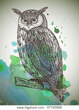 Vector Illustration Of Wild Totem Animal - Owl