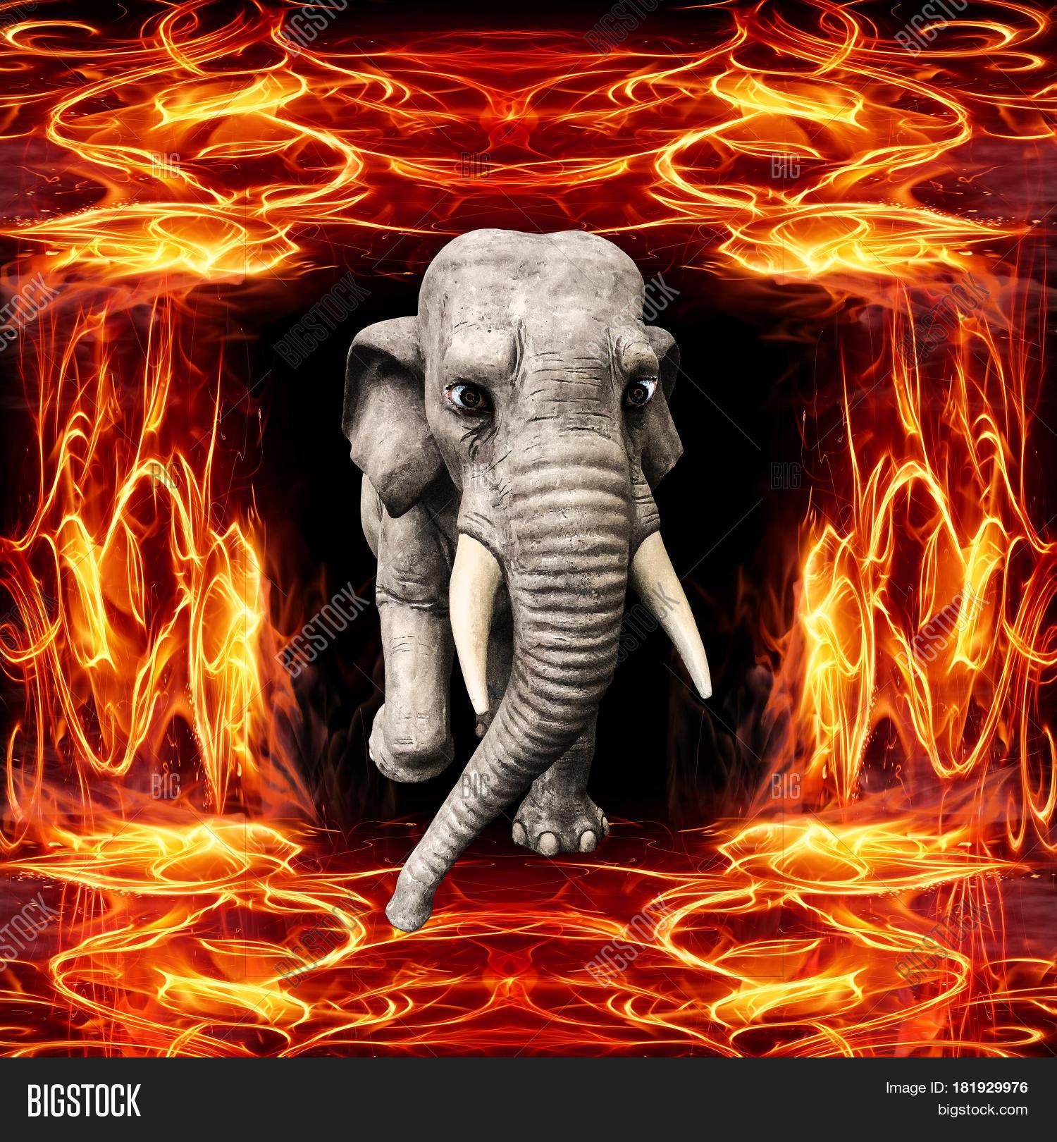 Слон покидает пламя