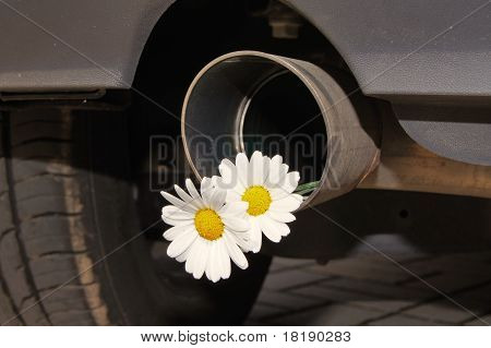 exhaust and flower