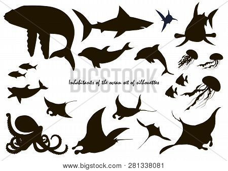 Fish And Marine Animals Silhouettes