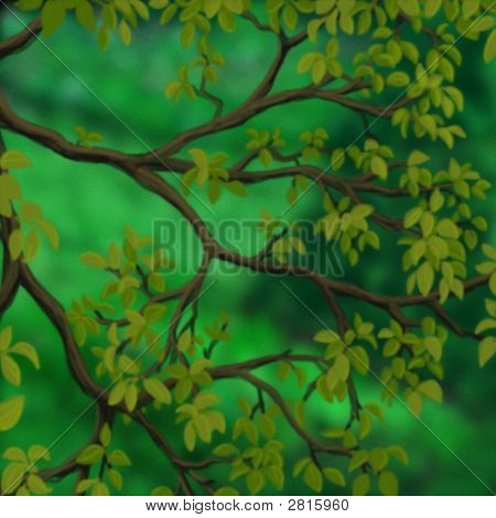 Green Tree Branches In Forest