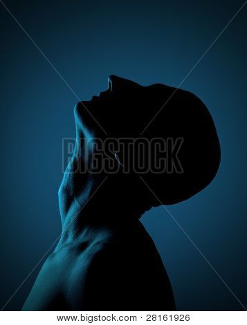 Silhouette Of A Bald Man