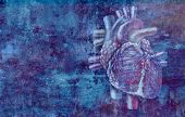 Human Heart Concept Anatomy On A Grunge Background As A Medical Health Care Symbol  Or Cardiology Ic poster