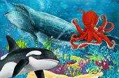 Cartoon Scene With Whale And Killer Whale And Octopus Near Coral Reef - Illustration For Children poster