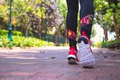Woman Jogging In Park, Bottom View, Selective Focus. Healthy Lifestyle And Wellness, Sport And Runni poster