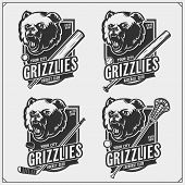 Cricket, Baseball, Lacrosse And Hockey Logos And Labels. Sport Club Emblems With Grizzly Bear. Print poster
