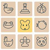 Zoology Icons Set With Duck, Ladybug, Panda Serpent Elements. Isolated  Illustration Zoology Icons. poster