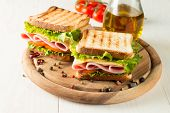 Close-up Photo Of A Club Sandwich. Sandwich With Meat, Prosciutto, Salami, Salad, Vegetables, Lettuc poster