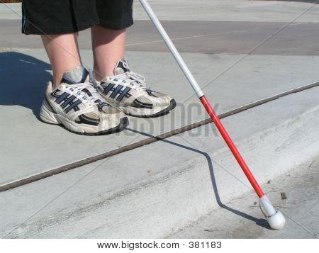 Blind Traveler