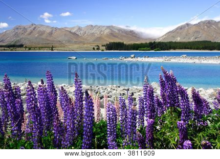 Valenders By Lake Tekapo