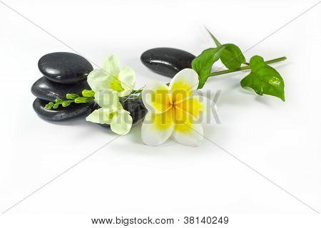 Spa Stones And Frangipani Flowers