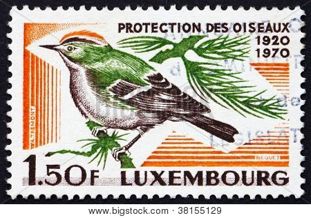Postage stamp Luxembourg 1970 Goldcrest, bird