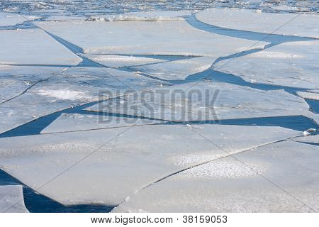 Frozen Sea With Big Ice Floes