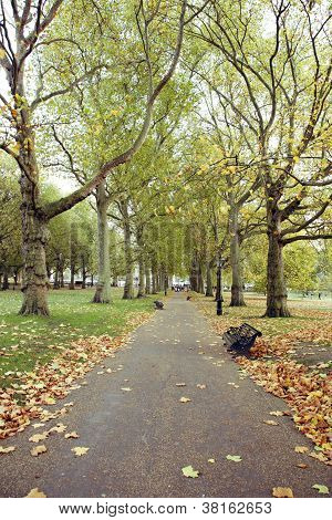 London Autumn Colors