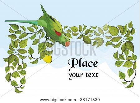 Parrot and lemon tree