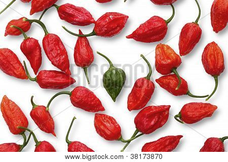 green buht jolokia pepper between red ones isolated on white